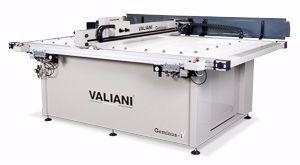 Picture of Valiani Geminus
